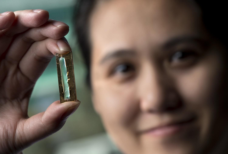 UCI's Nanobattery